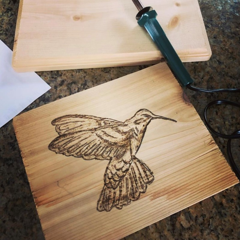 Hummingbird Pyrography